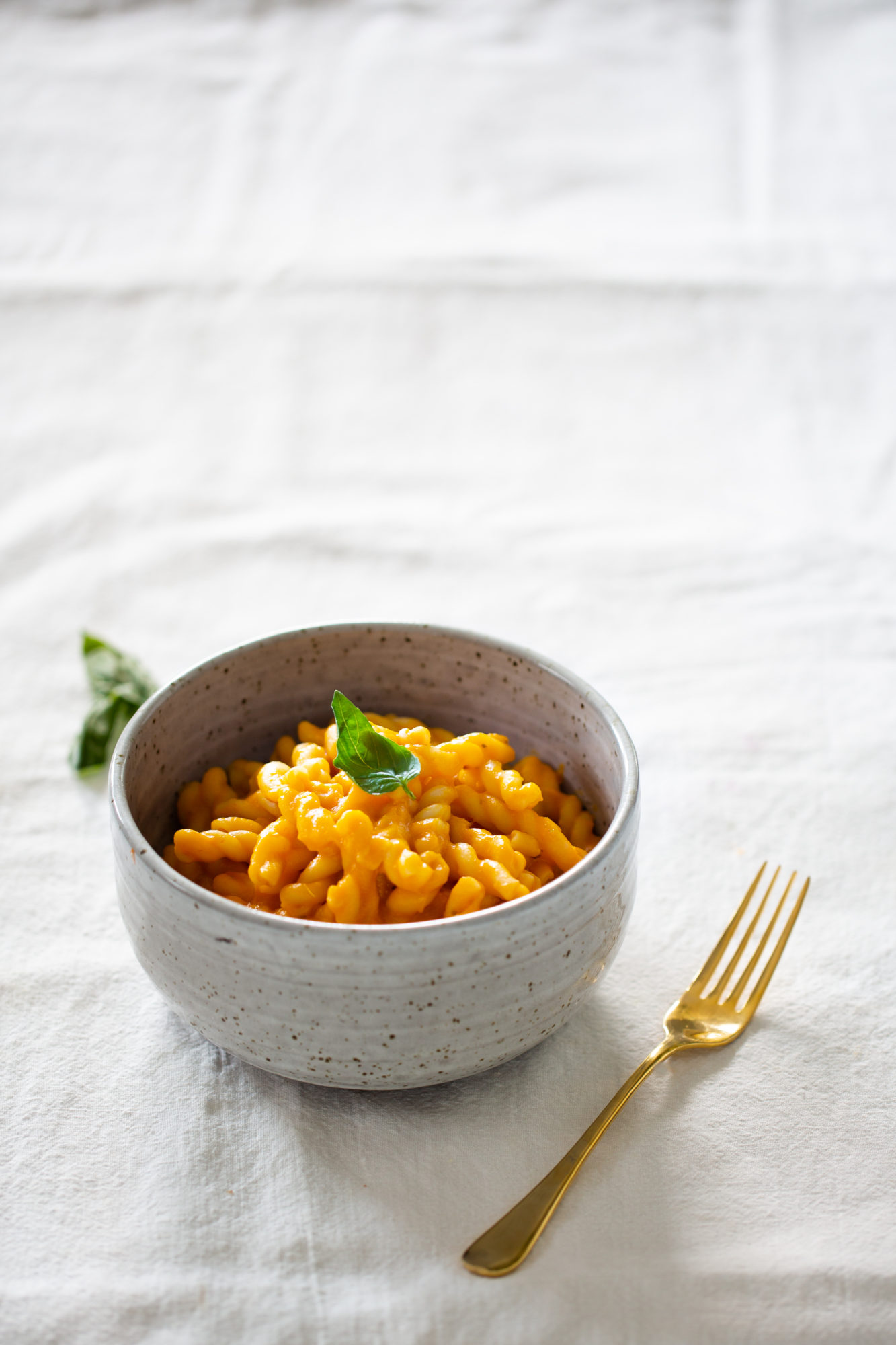 Bowl of pasta with butternut and tomato sauce.