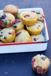 Berry sugarless muffins vegan recipe for breakfast or brunch