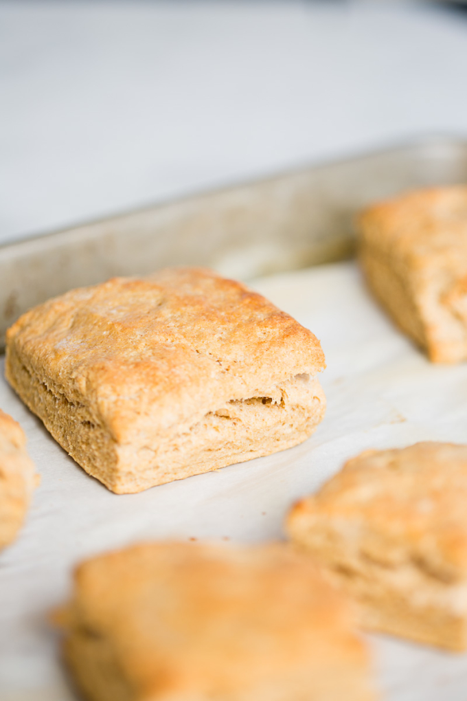biscuits-4-of-5