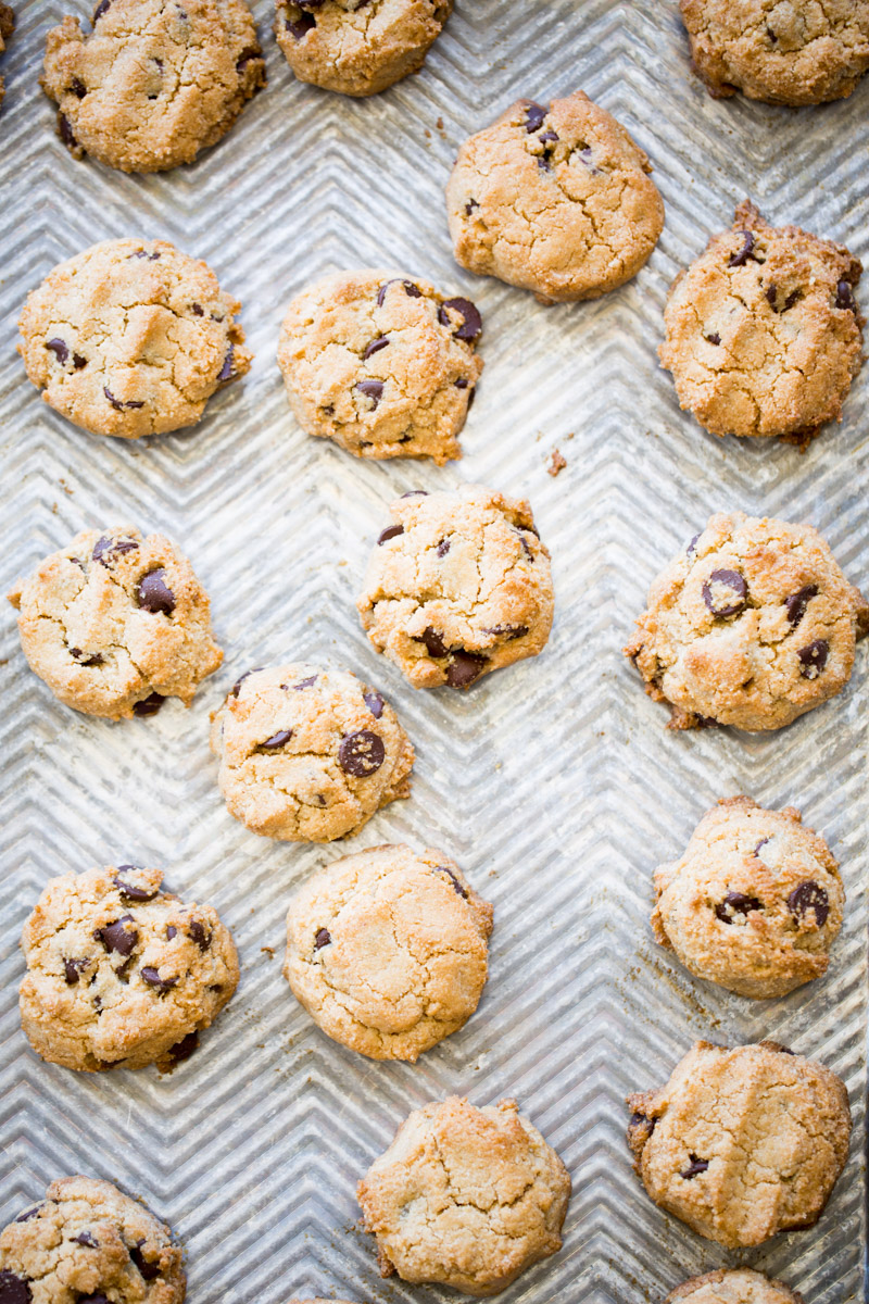 almond flour chocolate chip cookies piloncillo vainilla